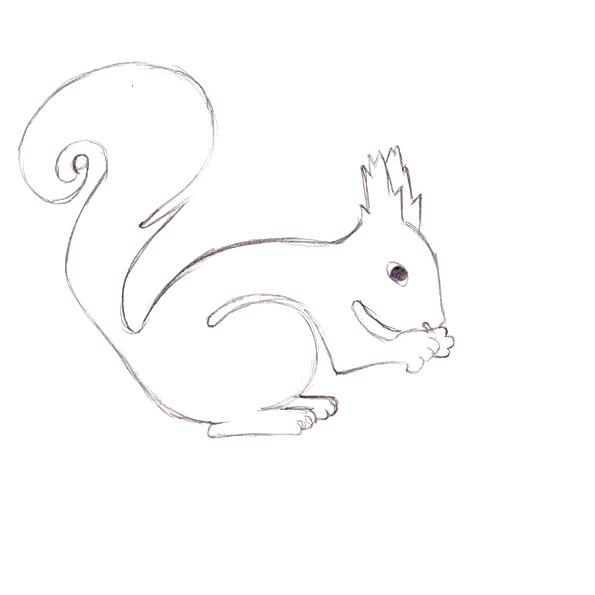 Eichhörnchen Meine Zeichnungen Kims Comiczeichenkurs Forum